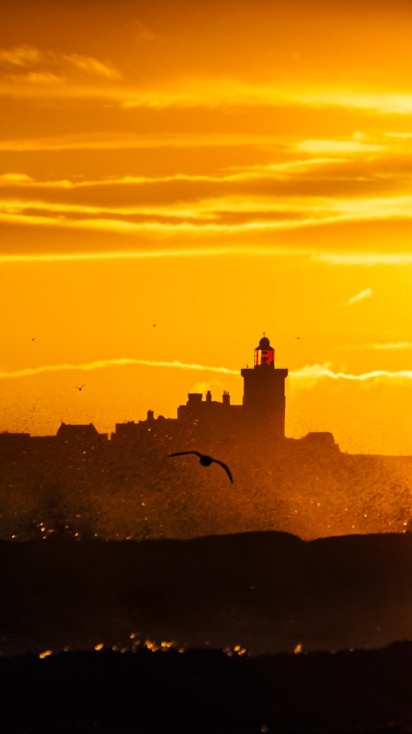 Sunrise and Gull over a stormy sea by Ivor rackham Photography