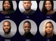 Meet the 2020 BBNaija Lockdown housemates