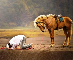 sujud - a young man praying on the border with horse - Irdan nofriza Nasution