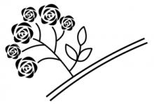 つるバラ房咲き