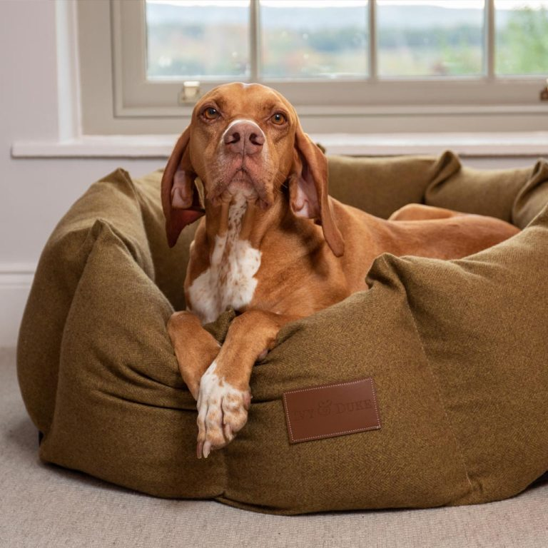 Extra Large Size Fabric Lounger In Tweed
