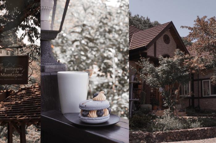 蒙塔妮手作甜點 |南投清境甜點店,森林系下午茶加景觀滿分的鄉村木屋,還能帶寵物讓人不愛上也難!