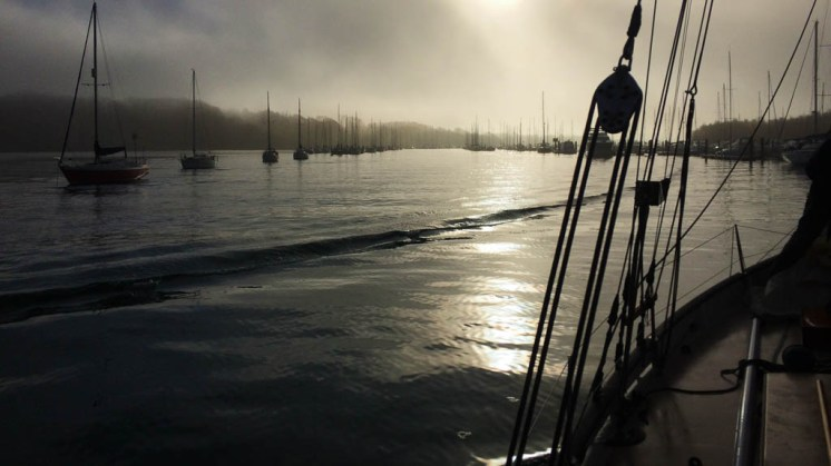 Misty Hamble