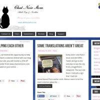 Chat Noir Store