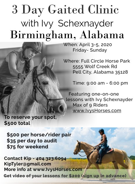 2020 Alabama horse clinic