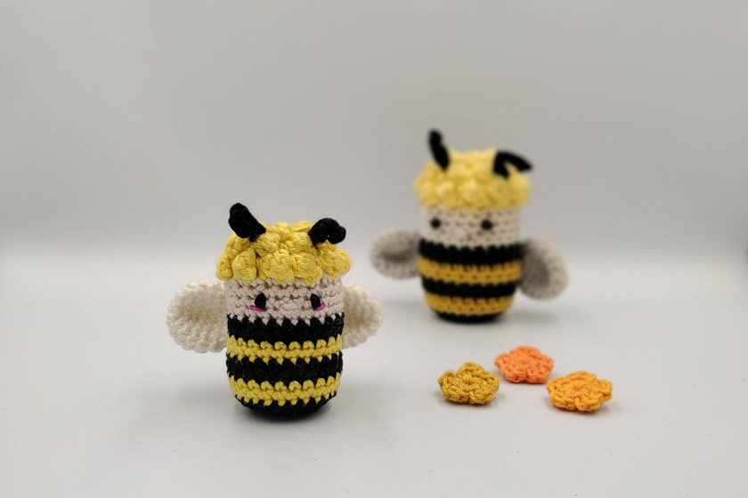 Lisa the bee