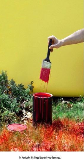 In Kentucky it's illegal to paint your lawn red.