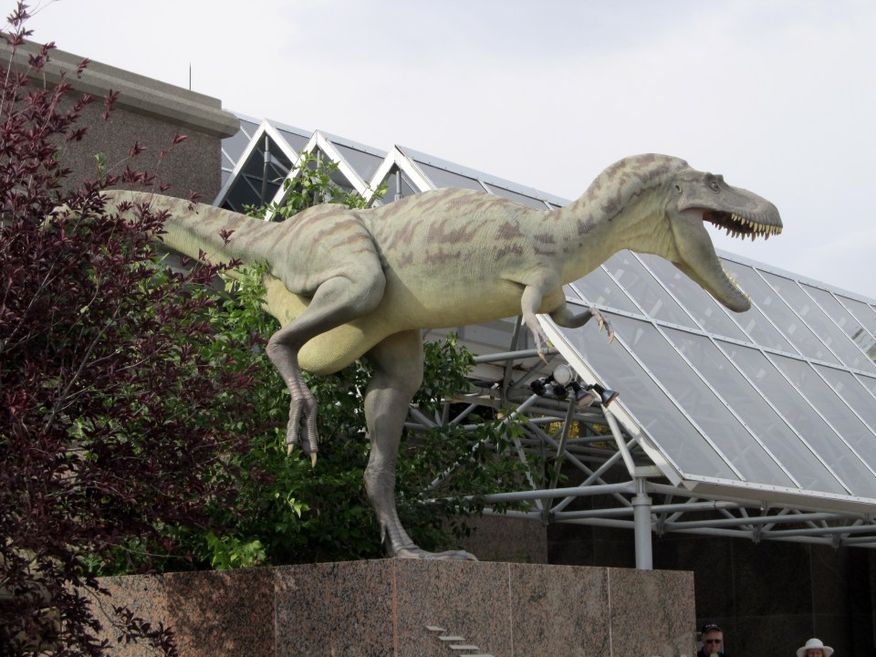 T-Rex at Royal Tyrrell Museum