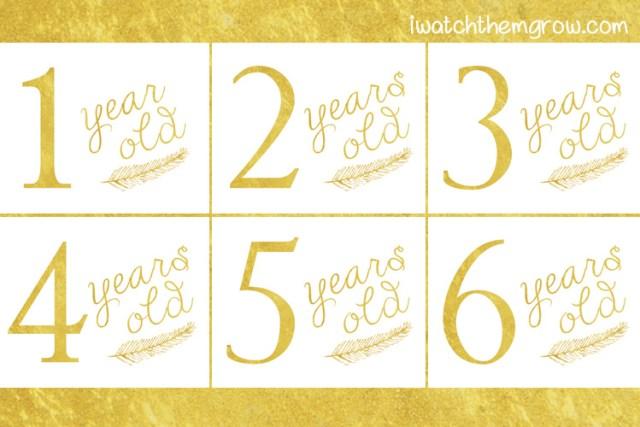 Gold leaf printable birthday photo signs FREE PRINTABLE!!!