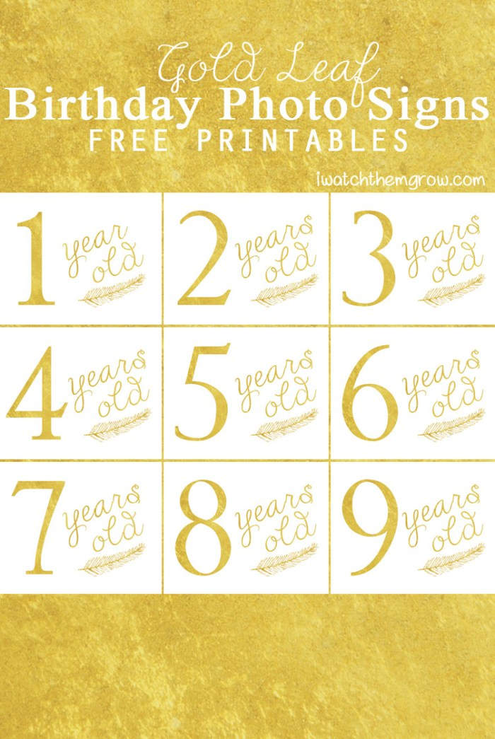 Gold leaf printable birthday photo signs for ages 1 to 9 years old and it's FREE!!