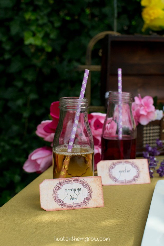 "Garden fairy party drink ideas: ""Morning Dew"" apple juice and ""Nectar"" cranberry-grape juice"