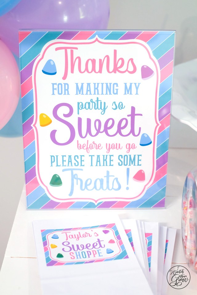 Sweet Shoppe party favors