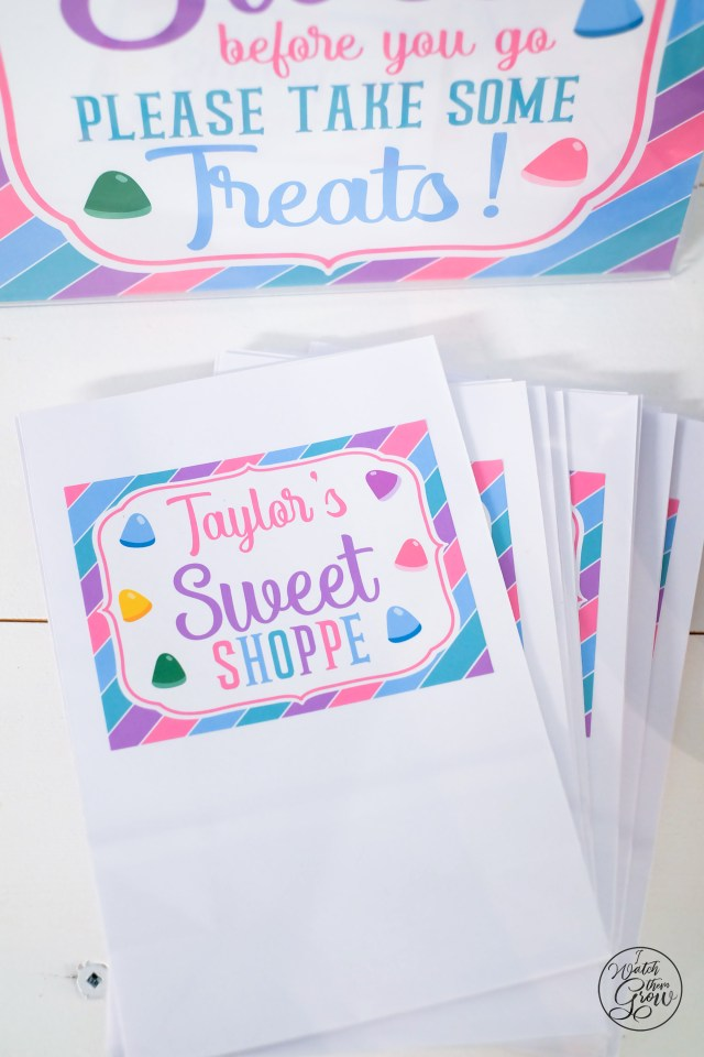 Sweet Shoppe party favor bags
