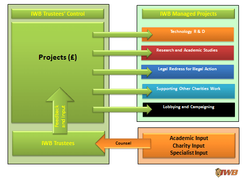 Chart 6
