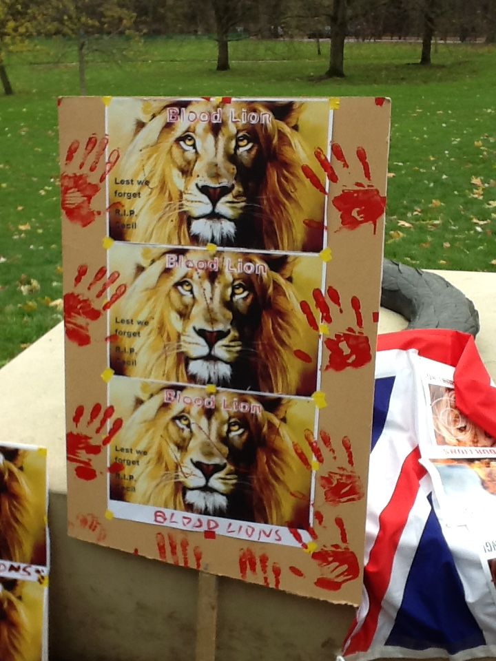March for Lions_28 November 2015 003