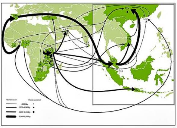 Ivory Trade Routes