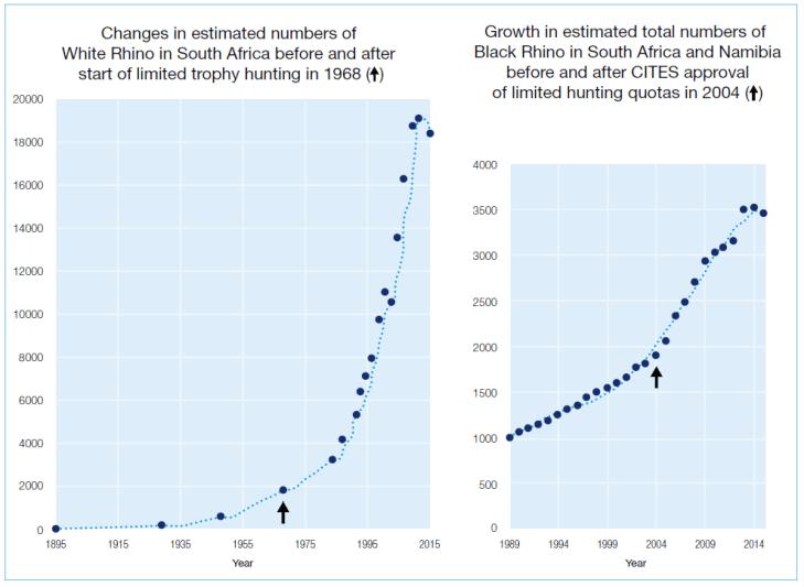 IUCN Rhino Population data