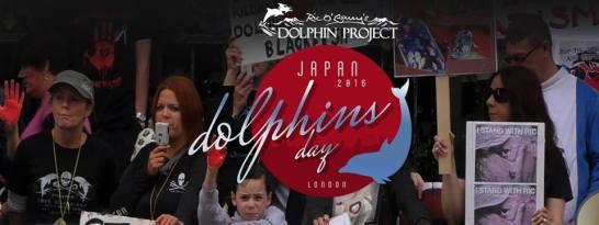 Taiji Dolphin Day