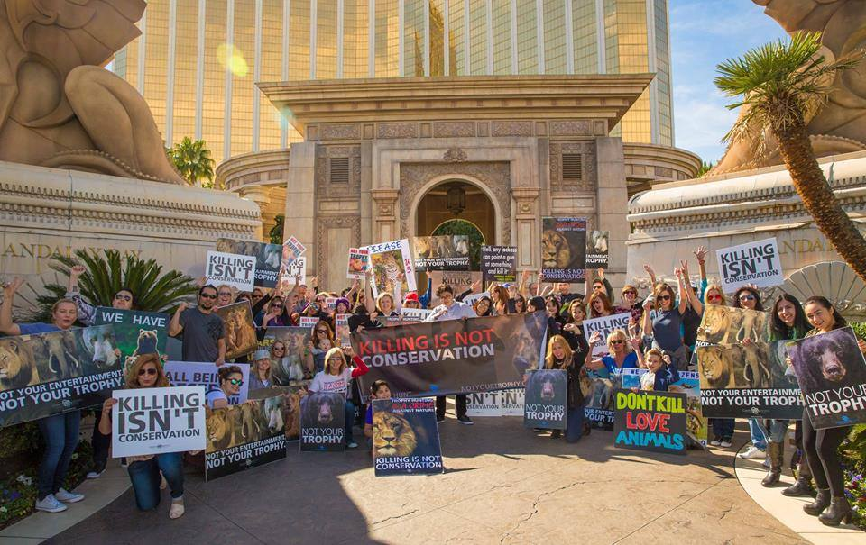 Worldwide Rally for Cecil_Las Vegas
