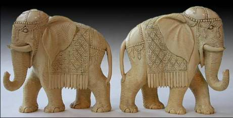 ivory-elephants_dscn1146
