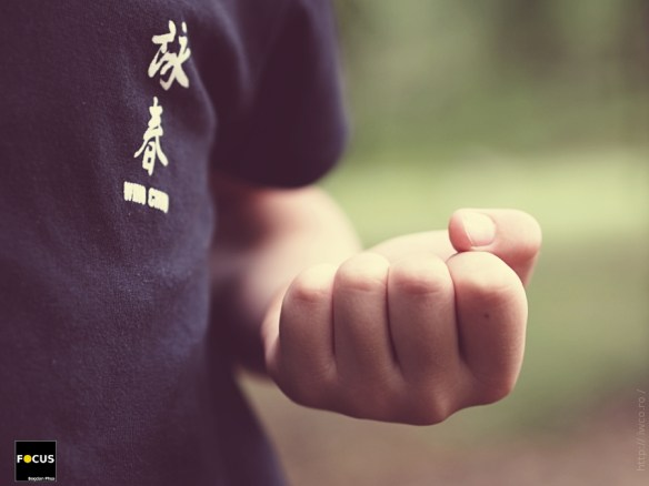 Kung Fu Junior