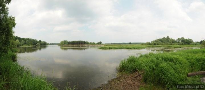 DSC_7838 Panorama
