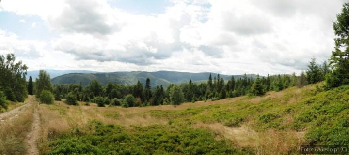 DSC_9915 Panorama