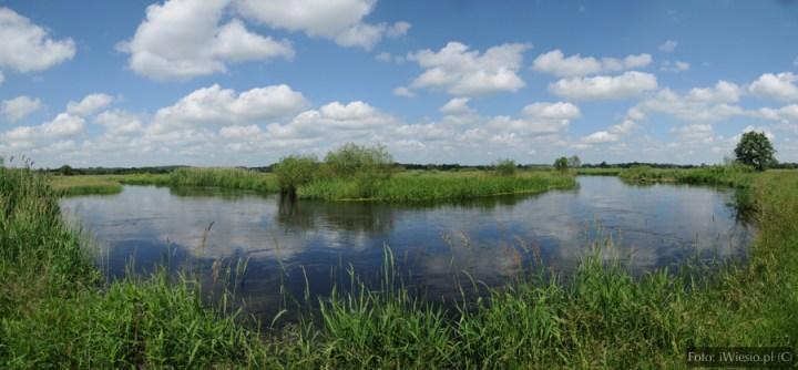 DSC_7528 Panorama