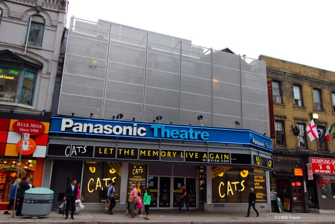 Cats performing at the Panasonic theatre