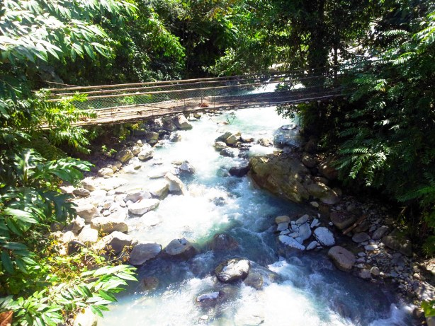 Sabah and Sarawak is home to rainforests and diverse flora and fauna