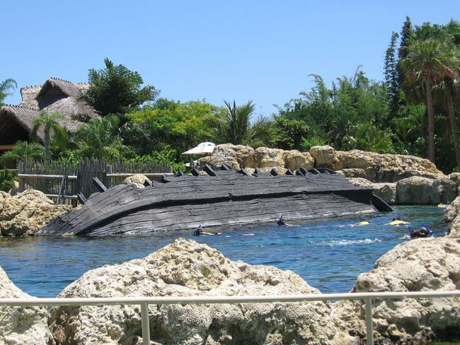 An artificial saltwater pool containing many types of rays and fish for guests to swim among.