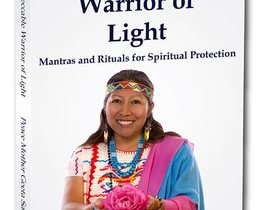 The Impeccable Warrior of Light Book