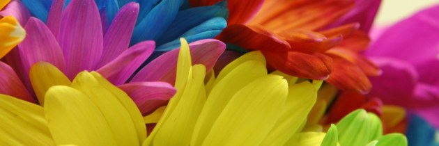 Wearing Positive Colors Brightens More Than Your Wardrobe!