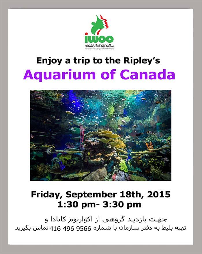 A Trips to Ripley's  Aquarium of Canada