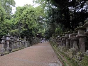 春日大社の参道:奈良、春日大社を参詣