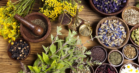 Impact Of Herbal Medicine On Modern Treatments