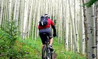 サイクリングの魅力