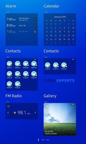 Samsung Z1 (2)