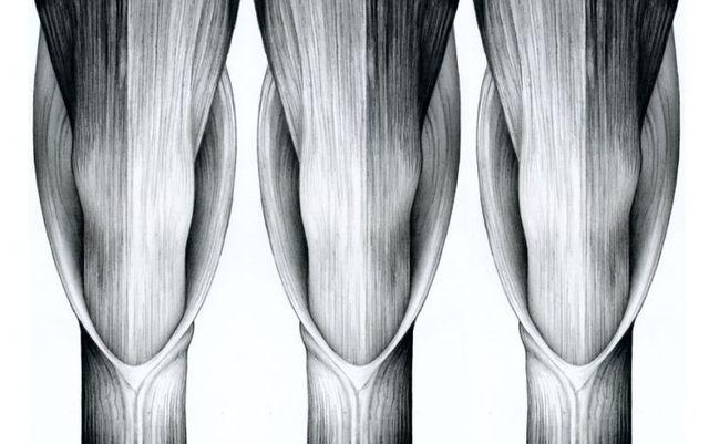 Masterpieces made with a pencil (41 photos)