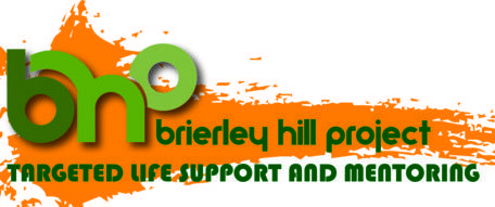 The Brierley Hill Project