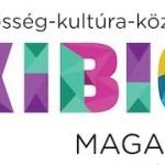 kibic logo1-1