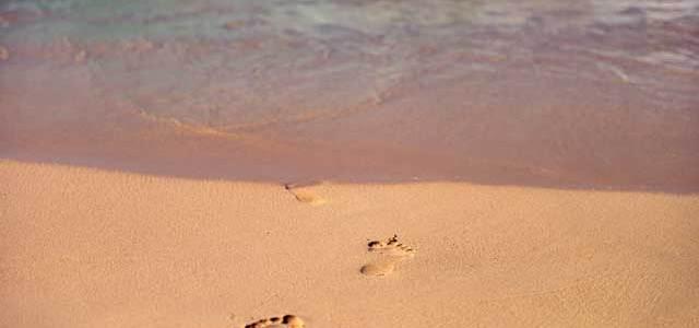 LJETO (doba kad je na plaži više čikova nego kamenčića)
