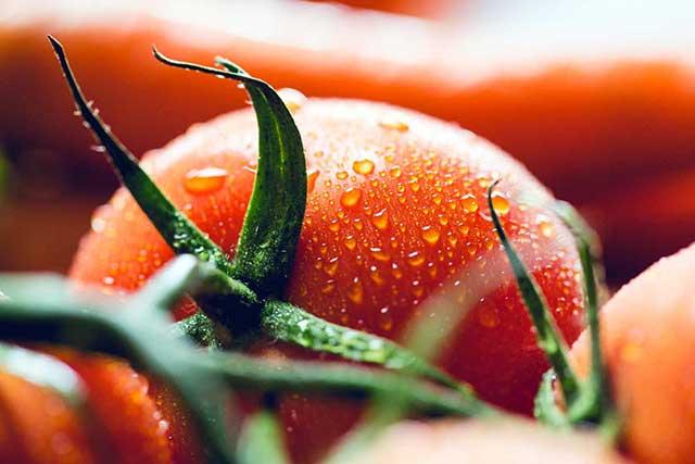 Što znamo o rajčici i njenim ljekovitim svojstvima
