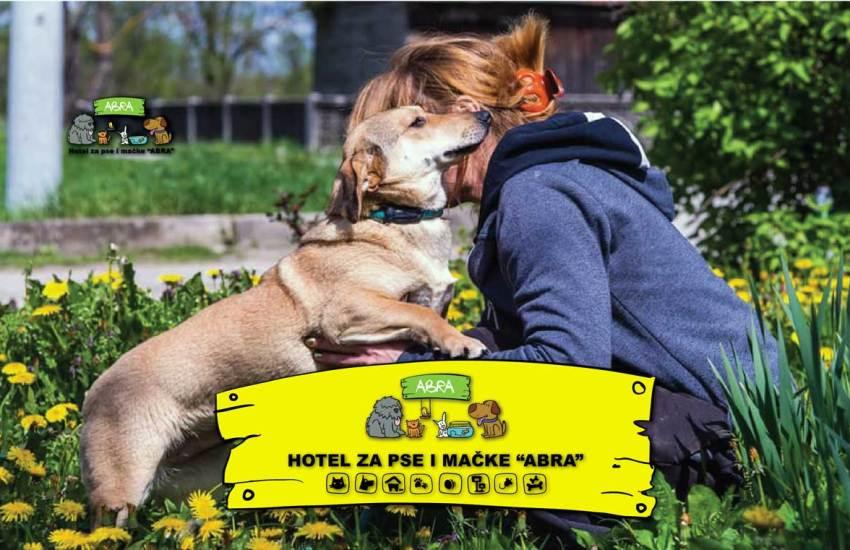 Hotel za kućne ljubimce, čuvanje pasa i mačaka, prijevoz, kupanje i održavanje dlake za pse i mačke u hotelu za kućne ljubimce Abra u Zagrebu