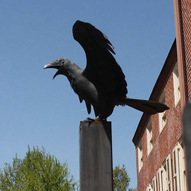 raven at Edger Allen Poe's house