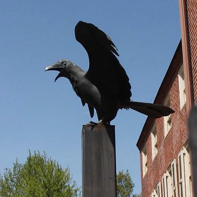 raven at Edger Allen Poe's house