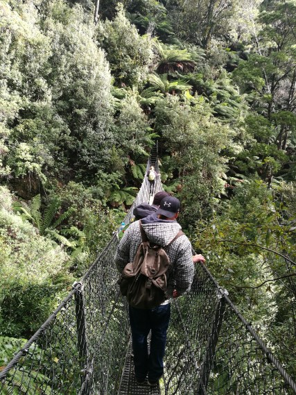 Bridge crossing by the waterfall