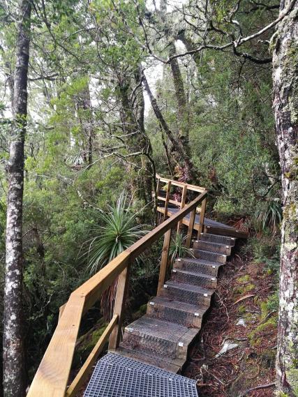 Green walking trail despite a snowy mountain!