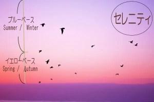 rose_color