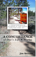 A Concordance of One's Life by Jim Nelson